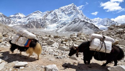 Adventure Kalapatther 5445m for Excellent Everest View Panorama